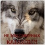 uvozzaimi_4elovek@mail.ru. 87011531413, 87779247445